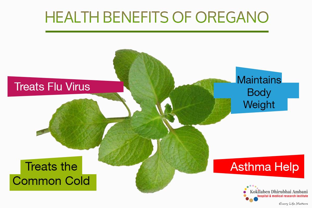Health Benefits of Oregano!
