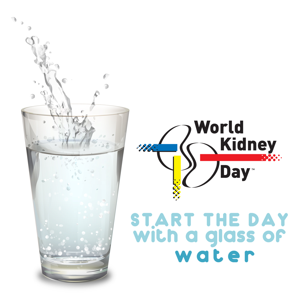 Drink water for a healthier kidney