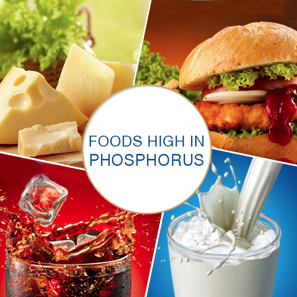 Foods high in Phosphorus