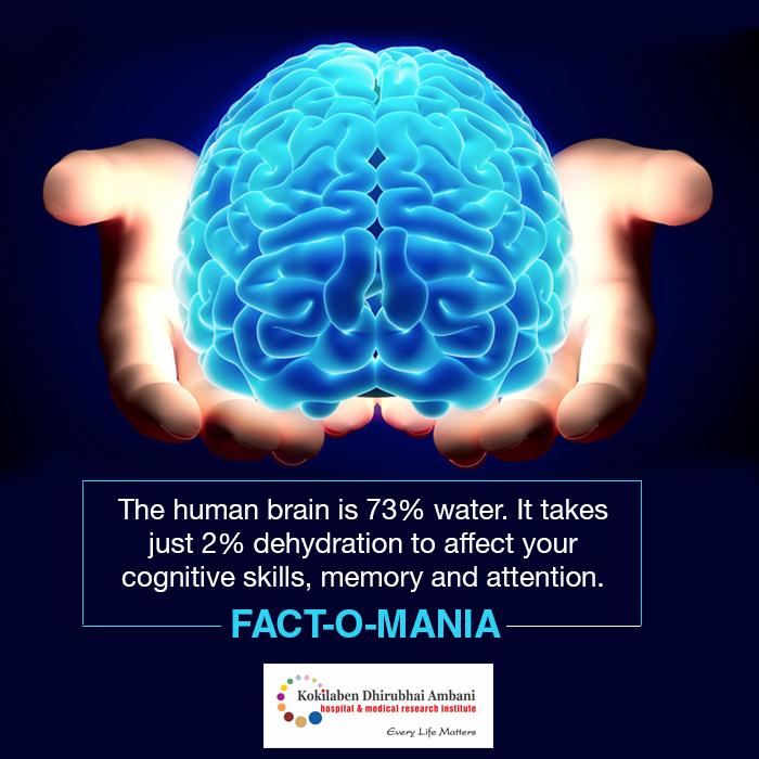 Fact-o-mania