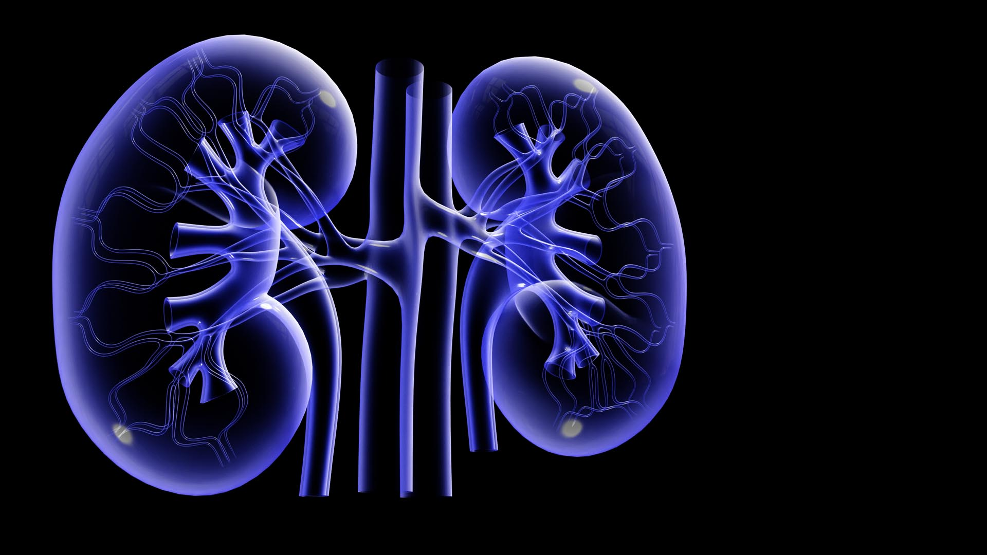 Causes of Kidney Diseases