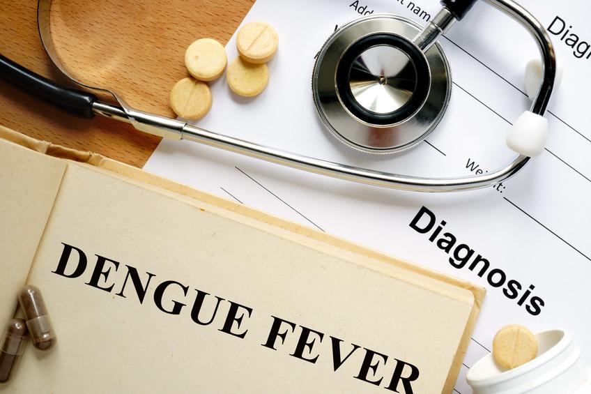 Dengue Alert!