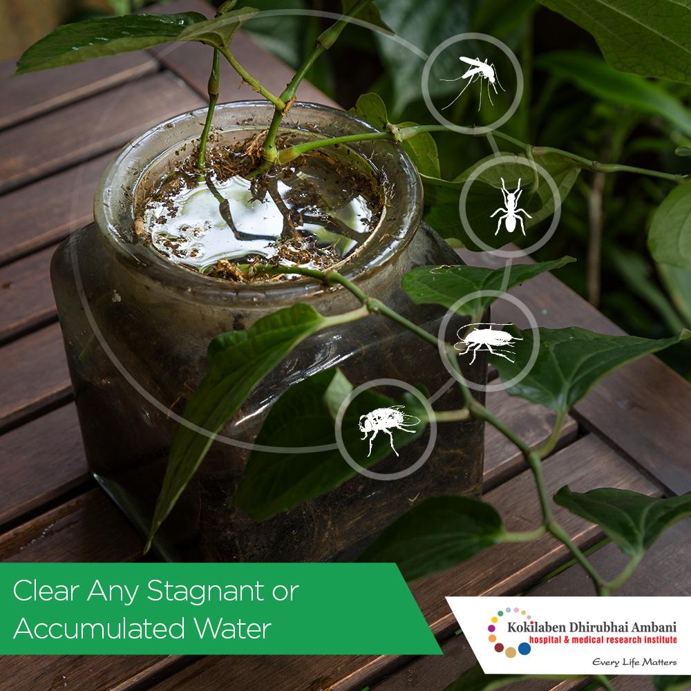 Stagnant water carries threat of disease