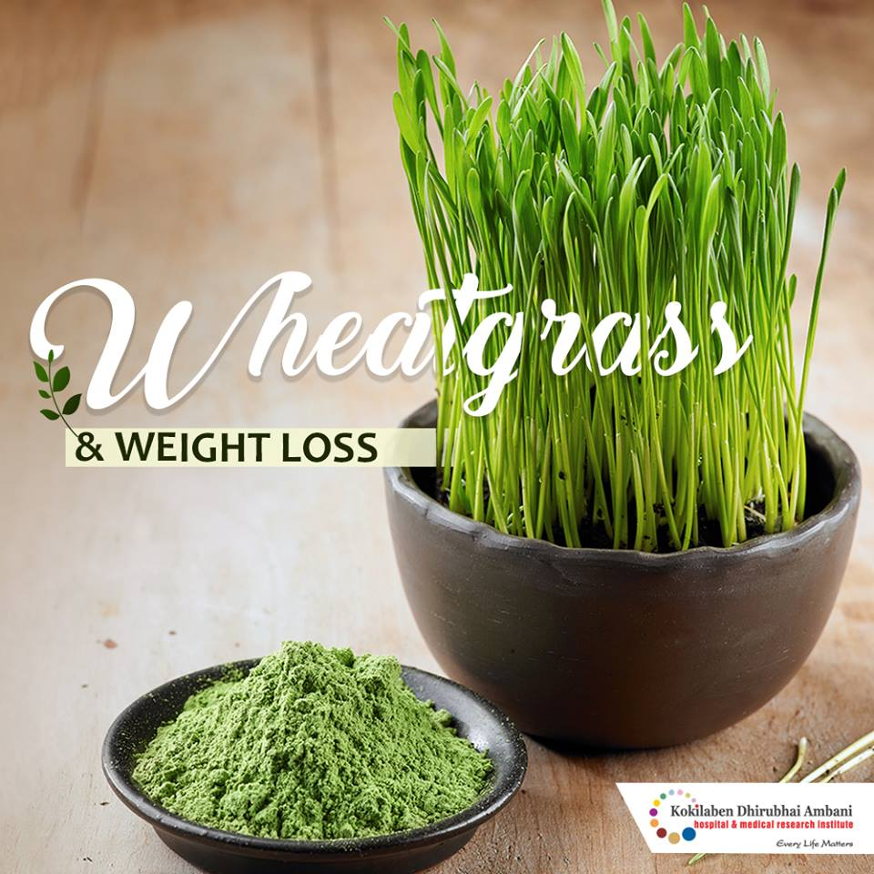 All about wheatgrass