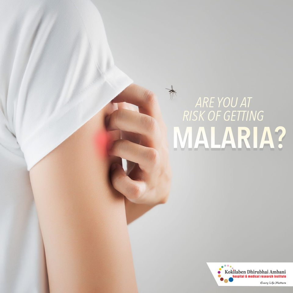 Are you at risk of getting malaria?